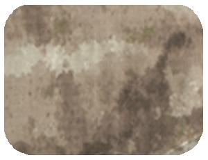 ATACS-AU